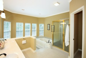 Two-level master bath with 2-sink vanity, separate shower, whirlpool, sitting area and HUGE master closet off to side