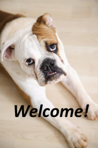 Dog welcoming prospective home buyers