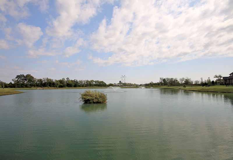neighborhood fishing pond