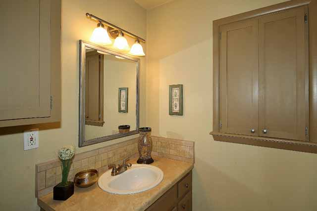 18 hall bath sink