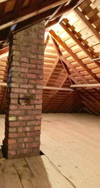 Floored attic for expansion or storage