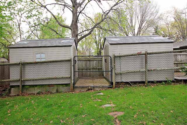 sheds and dog run